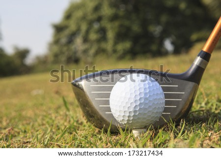 Golf club and ball in grass in at sunrise on frosty morning. - stock photo
