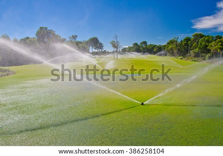 Golf course gets irrigated. Golf field, course sprinkling. Caribbean, tropical resort. - stock photo