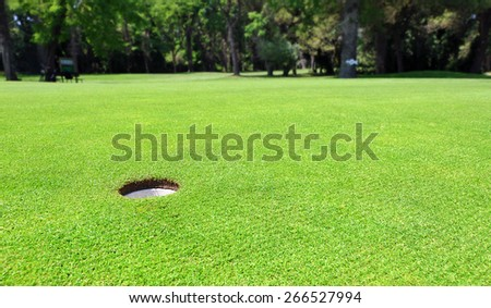 Golf course hole on the putting green - stock photo