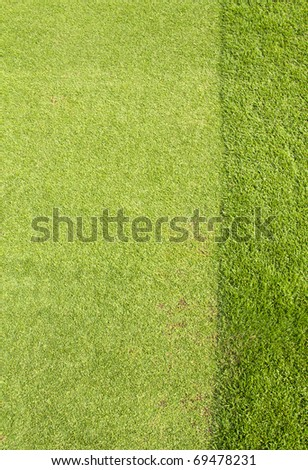 Golf greens,Golf sport is Balance of Yin Yang.Paste the text into the space  right hand side