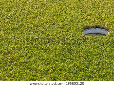Golf hole on the green grass. - stock photo