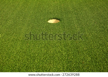 Golf hole on the green grass background - stock photo
