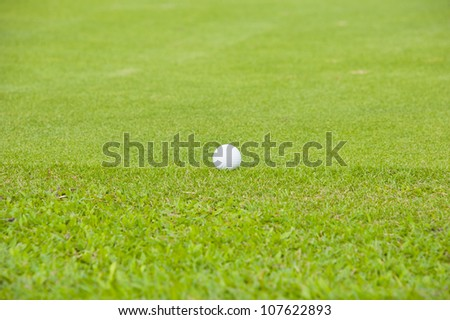 Golf on green grass field