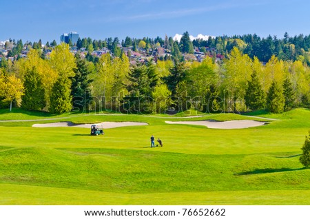 Golf place with gorgeous green and nice forest view. - stock photo