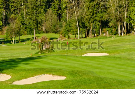 Golf place with gorgeous green and wild forest view.