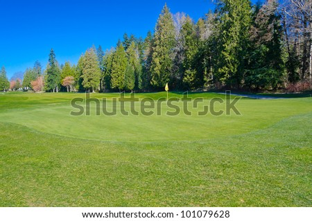 Golf place with gorgeous green grass and blue sky.