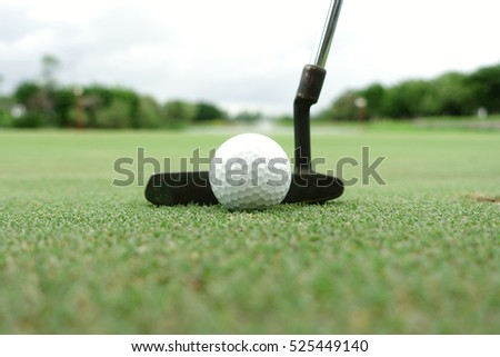 Golf  putting on green