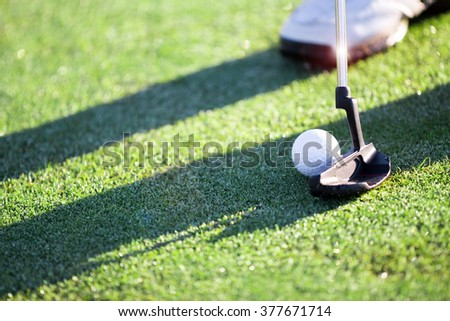 Golfer hitting a putt on the green. - stock photo