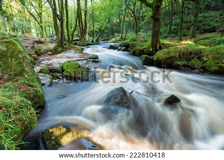 Golitha Falls a magical forest cascade on the southern edge of Bodmin Moor in Cornwall - stock photo