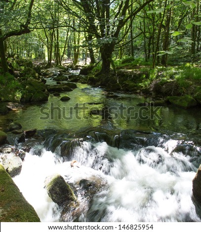 Golitha Falls in woodland River Fowey Bodmin Moor Cornwall England, Cornish tourist attraction