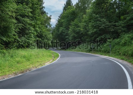 good road in summer forest