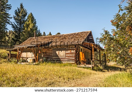 Good-sized abandoned log home with afternoon sunlight in a mining ghost town in Montana.  The mountain ash adds nice color. - stock photo