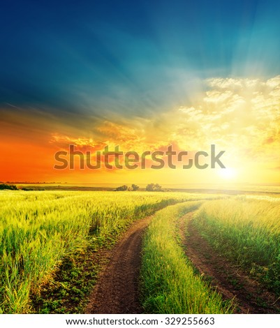 good sunset and road in green fields