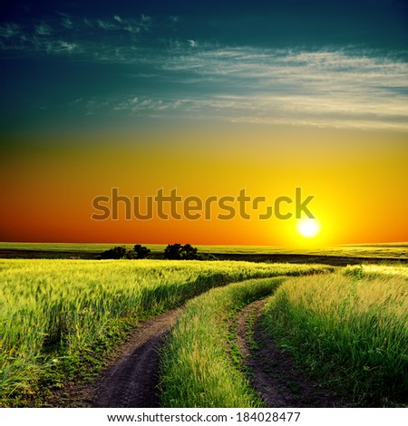 good sunset and road to horizon in green field