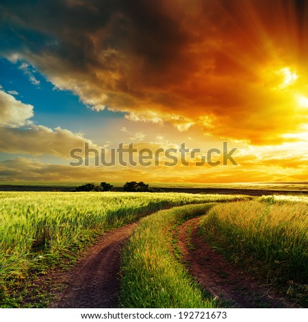 good sunset over winding road in field
