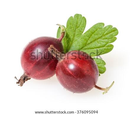Gooseberry isolated on white background - stock photo
