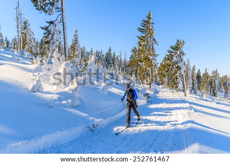 GORCE MOUNTAINS, POLAND - FEB 14, 2015: cross-country skier on trail in winter landscape of Gorce Mountains. Skiing is healthy and sport which is very popular in Poland