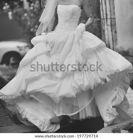 Gorgeous bride in beautiful dress. Black and white wedding picture. - stock photo