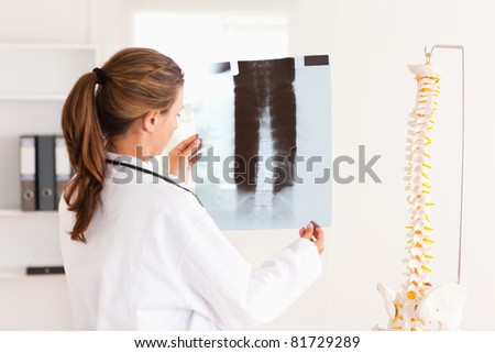 Gorgeous doctor with a stethoscope looking at a x-ray in the surgery