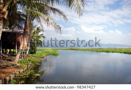 gorgeous landscape by the waterside with palm trees and a romantic wooden cabin