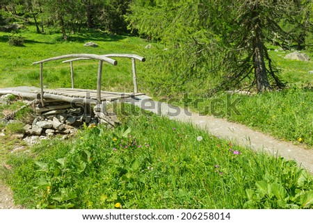 Gorgeous meadow of wild flowers of the Swiss Alps in the Grisons. The path along the field leads to a wooden bridge over a small lake and creek. Bright summer day. - stock photo