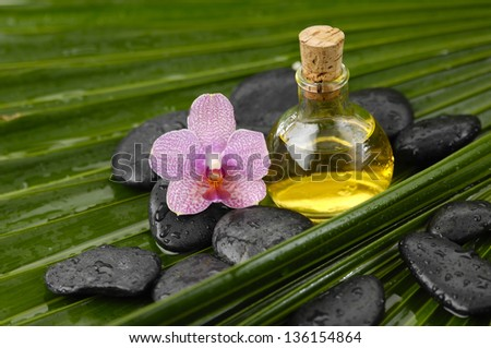 gorgeous orchid with wet spa stones ,massage oil on palm leaf texture