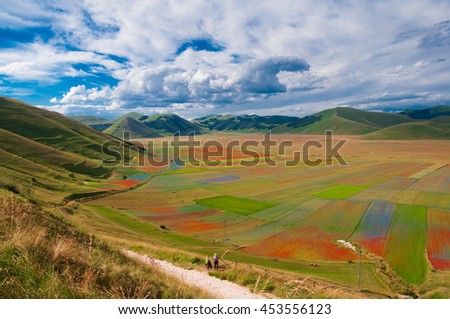 Gorgeous valley with patchwork fields of flowers and 2 people looking at it