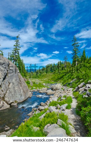 Gorgeous view at the trail along the river, creek at the mountain valley. North America. Vertical. - stock photo