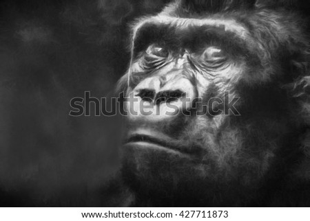 Gorilla in black and white charcoal textured effect. This is computer generated art from a photograph.