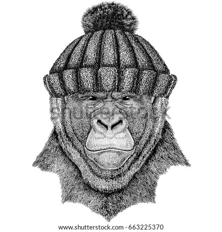 Gorilla-hat Stock Images, Royalty-Free Images & Vectors ...
