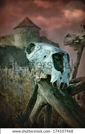 Gothic skull of a horse on a tree near the old fortress, halloween - stock photo
