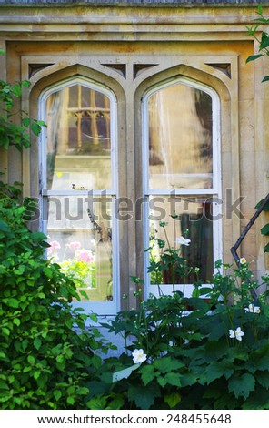 Gothic window overgrown with ivy and roses in the background. Shot at University of Oxford, UK. - stock photo