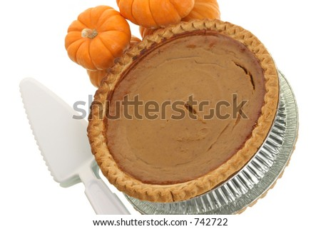 gourds and pumpkin pie with serving utensil - stock photo