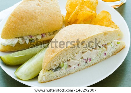 Gourmet chicken salad sandwich with chips on the side.