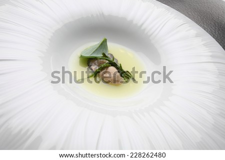 Gourmet food  oyster - stock photo