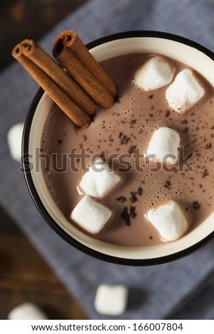 Gourmet Hot Chocolate Milk with Cinnamon and Marshmallows - stock photo