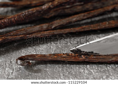 Gourmet Madagascar vanilla beans being split open with a knife to expose the tiny flavor filled seeds.  Pods are resting on a slate cutting board.  Macro with shallow dof. - stock photo
