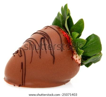 Gourmet style dipped strawberry in milk chocolate ganache with dark chocolate design on top. - stock photo