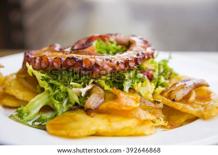 Gourmet tasty colorful octopus salad - stock photo