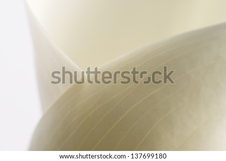 Graceful abstract curves of a softly lit white calla lily on a grey background - stock photo
