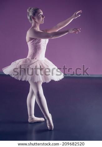 Graceful ballerina standing in pink tutu in the ballet studio - stock photo