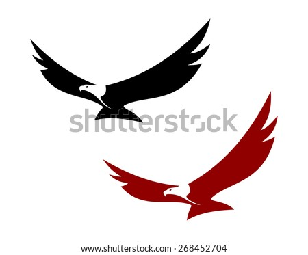 Graceful soaring eagle with outstretched wings in two colour variations - stock photo
