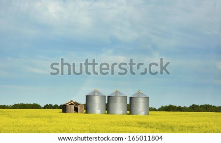grain elevator in the canola field in Canadian prairie province - stock photo
