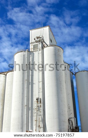 Grain elevator is icon in the small community of Andale, Kansas.  White cylinder tower into a vivid blue sky.