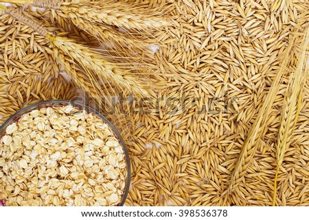 Grain oats, oat flakes in a box, twigs barley closeup - stock photo