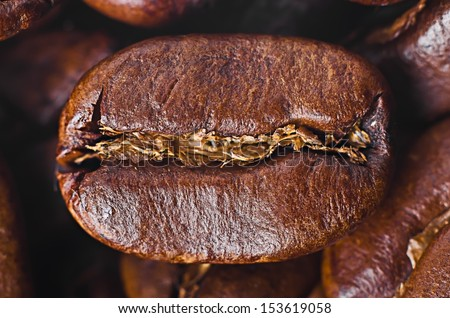 Grain of coffee close-up - stock photo