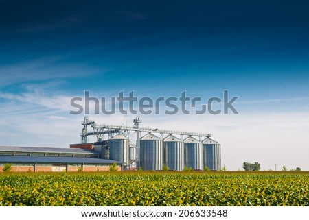 Grain Silos in Sunflower Field. Set of storage tanks cultivated agricultural crops processing plant. - stock photo
