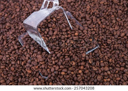 Grains of black roasted coffee in transparent cup with saucer  - stock photo