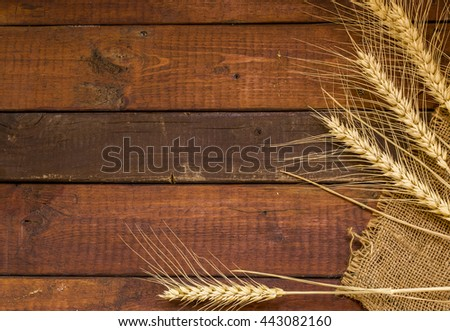 Grains of Wheat on weathered wooden background with copy-space.Flat Lay