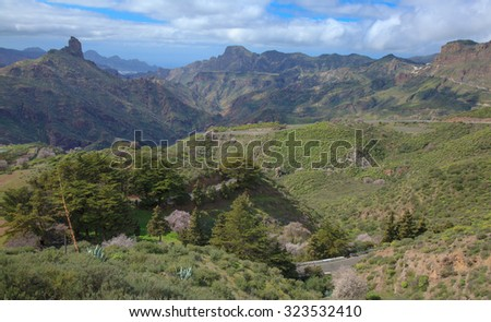 Gran Canaria, Caldera de Tejeda in February, almond trees in full bloom canbe seen on the slopes
